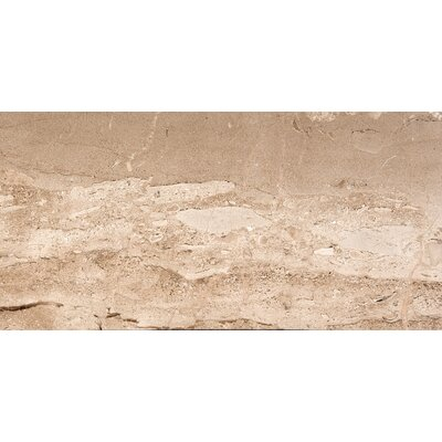 Natural Stone 12 x 24 Marble Field Tile in Daino Reale