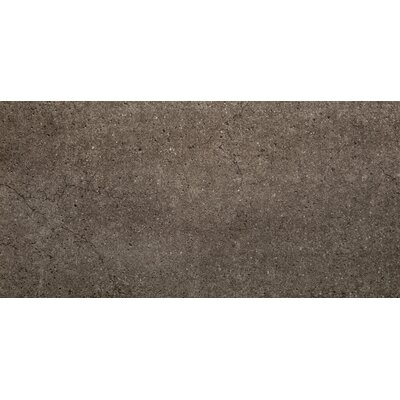 Rio Grande 12 x 24 Porcelain Field Tile in Stream
