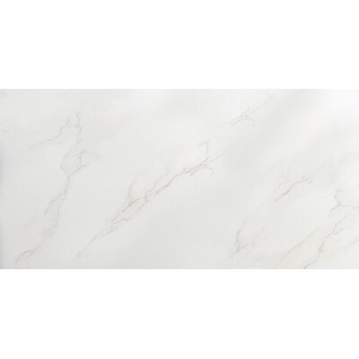 Paladino 12 x 24 Porcelain Metal Look Field Tile in Albanella
