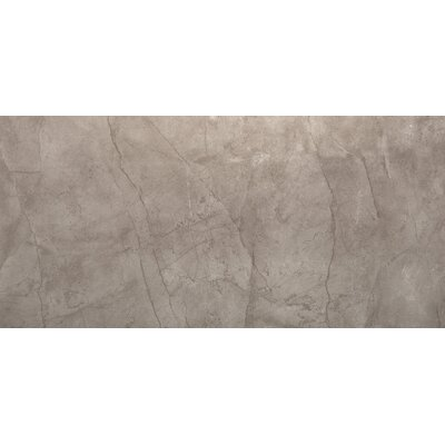 Citadel 12 x 24 Porcelain Field Tile in Gray