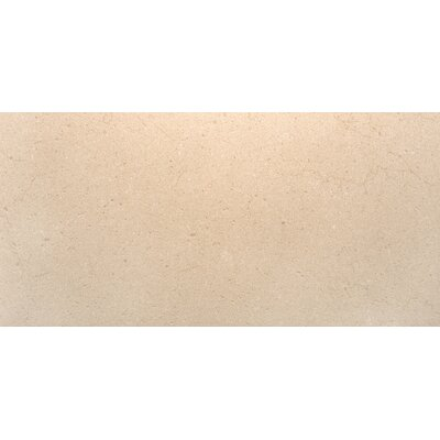 Rio Grande 12 x 24 Porcelain Field Tile in Brook