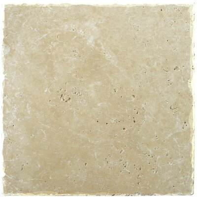 Natural Stone Fontane 12 x 12 Travertine Field Tile in Ivory Classic