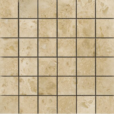 Natural Stone 2 x 2 Travertine Mosaic Tile in Pendio Beige