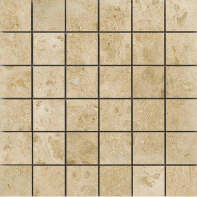 Natural Stone 2 x 2 Travertine Field Tile in Pendio Beige