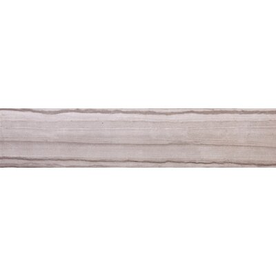 Chronicle 3 x 24 Porcelain Bullnose Tile Trim in Script