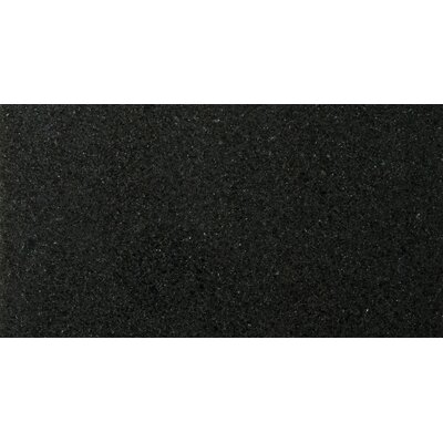 Natural Stone 12 x 24 Granite Field Tile in Absolute Black