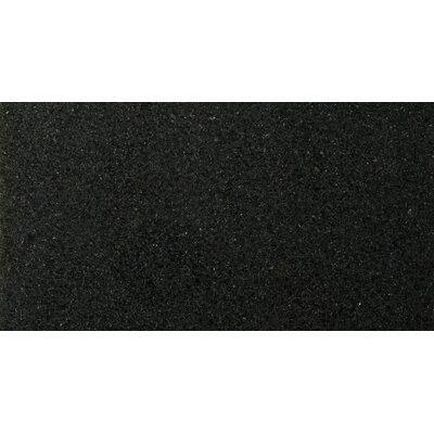 Natural Stone 12 x 24 Granite Field Tile in Absolute Black