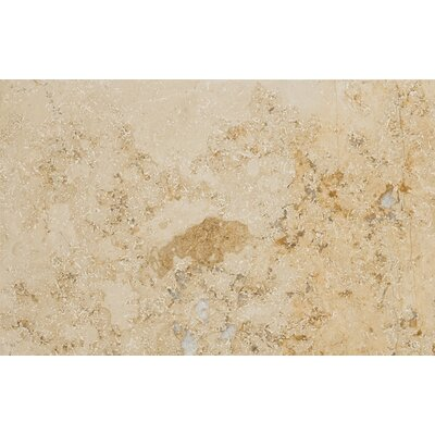 Natural Stone 16 x 24 Limestone Field Tile in Beige