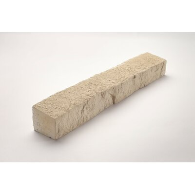 Wainscot 3 x 20 Engineered Stone Splitface Tile in Beige
