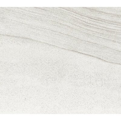 Sandstorm 18 x 18 Porcelain Field Tile in Gobi
