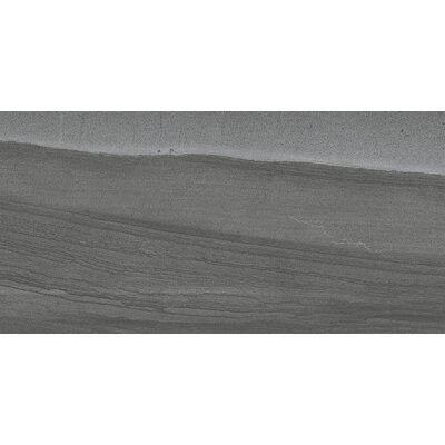 Sandstorm 12 x 24 Porcelain Field Tile in Sahara