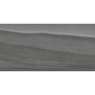 Sandstorm 12 x 24 Porcelain Field Tile in Sahara
