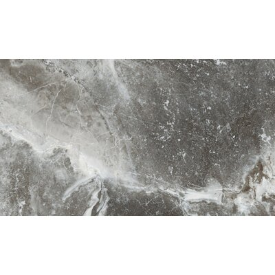 Vienna 12 x 24 Porcelain Field Tile in Strausse