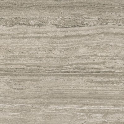Terrane 18 x 36 Porcelain Field Tile in Gray