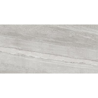 Access 18 x 35 Porcelain Field Tile in Tour