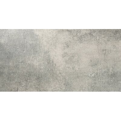 Chiado 12 x 24 Porcelain Field Tile in Jerome