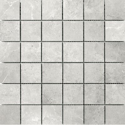 Realm 2 x 2 Ceramic Mosaic�Tile in Domain