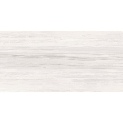 Ciudad 12 x 24 Ceramic Stone Look Field Tile in Ash