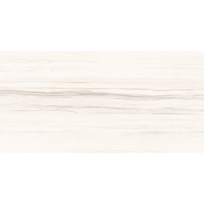 Ciudad 12 x 24 Ceramic Field Tile in Cream