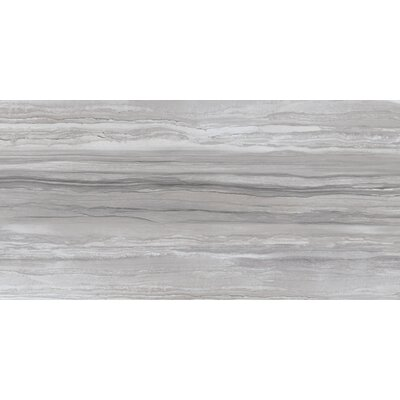 Ciudad 12 x 24 Ceramic Field Tile in Gray