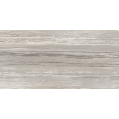 Ciudad 12 x 24 Ceramic Field Tile in Taupe