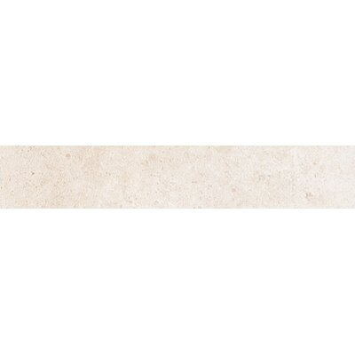 Newberry 16 x 3 Porcelain Bullnose Tile Trim in Bianco