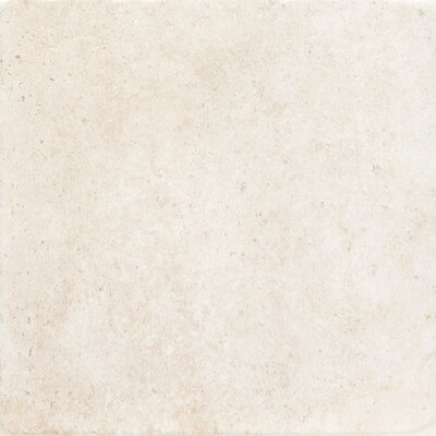Newberry 8 x 8 Porcelain Field Tile in Bianco