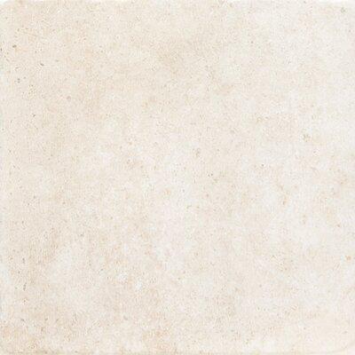 Newberry 16 x 16 Porcelain Field Tile in Bianco