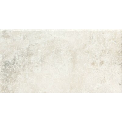 Newberry 8 x 16 Porcelain Field Tile in Bianco