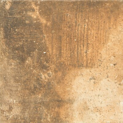 Newberry 8 x 8 Porcelain Field Tile in Cotto