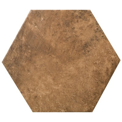 Newberry Hexagon 10 x 11 Porcelain Field Tile in Cotto