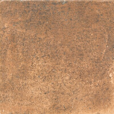 Newberry 16 x 16 Porcelain Field Tile in Cotto