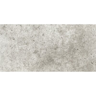 Newberry 4 x 8 Porcelain Field Tile in Grigio