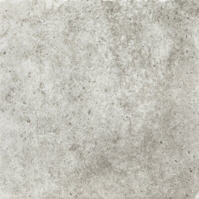 Newberry 8 x 8 Porcelain Field Tile in Grigio