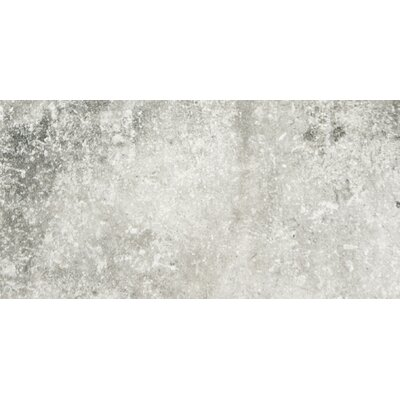Newberry 8 x 16 Porcelain Field Tile in Grigio