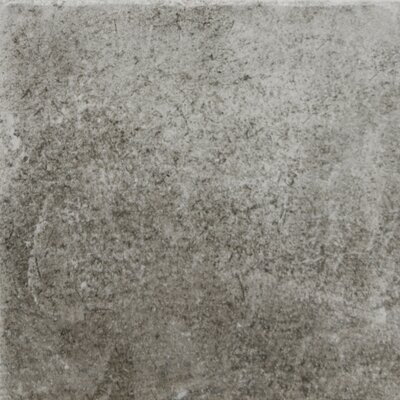 Newberry 8 x 8 Porcelain Field Tile in Grafite