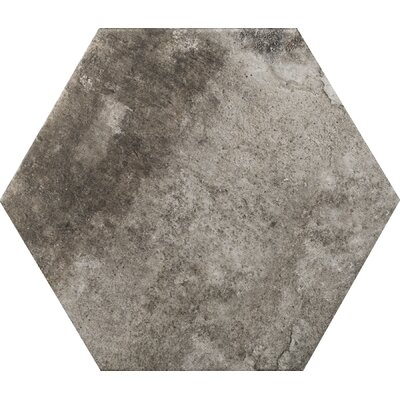 Newberry Hexagon 10 x 11 Porcelain Field Tile in Grafite