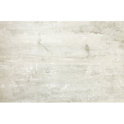 Ranch 12 x 24 Porcelain Wood Look Tile in Farm