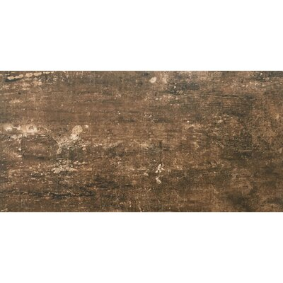 Ranch 12 x 24 Porcelain Wood Look Tile in Pasture
