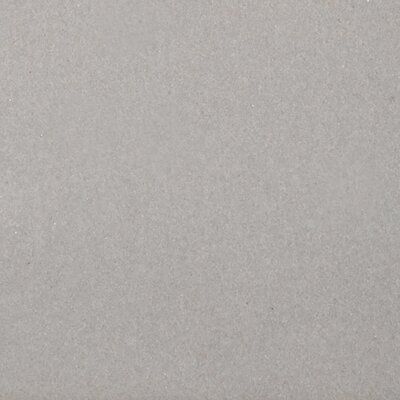 Perspective Pure 12 x 12 Porcelain Field Tile in Dove
