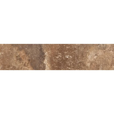 Bristol 13 x 3 Ceramic Single Bullnose Tile Trim in Clifton