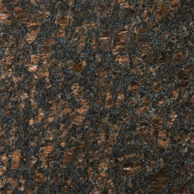 Granite 12 x 12 Field Tile in Tan Brown