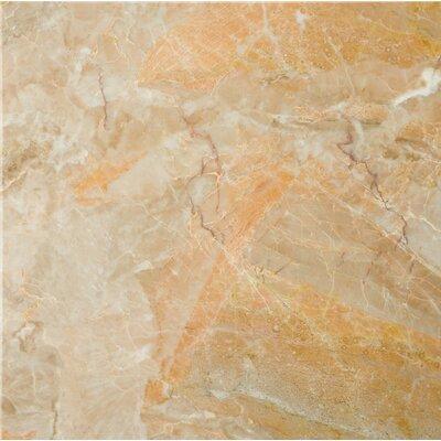 Marble 12 x 12 Field Tile in Breccia Oniciata
