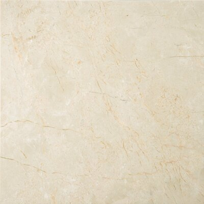 "Crema Marfil 12"" x 12"" Polished/Honed Marble Tile in Crema Marfil"