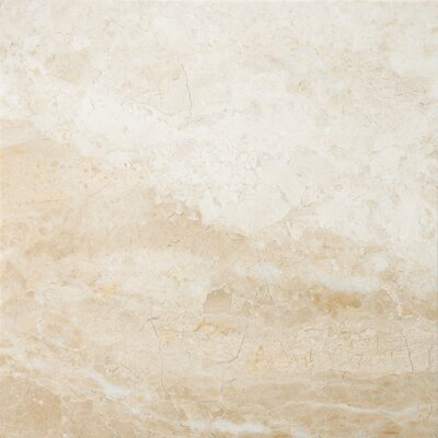 "Natural Stone 18"" x 18"" Marble Tile in Milano Beige"
