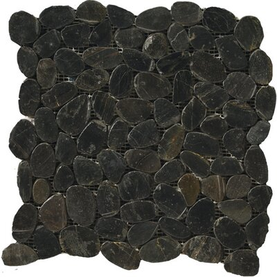 Flat Rivera Pebbles 12 x 12 Mosaic in Black