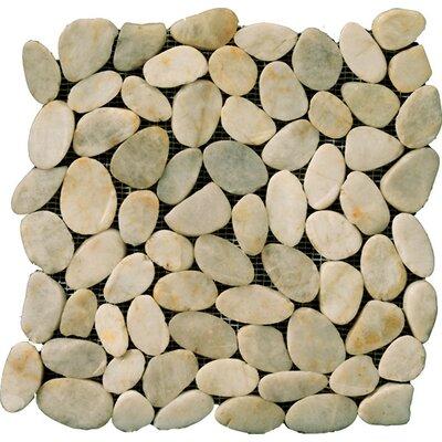 Flat Rivera Pebbles 12 x 12 Mosaic in Cream