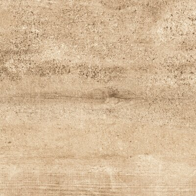 Explorer 18 x 18 Porcelain Field Tile in Barcelona