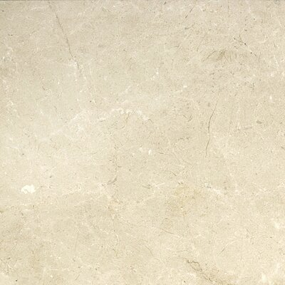 Marble 18 x 18 Field Tile in Crema Marfil Plus