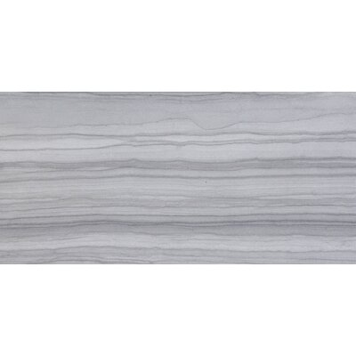 Chronicle 17 x 35 Porcelain Field Tile in Record